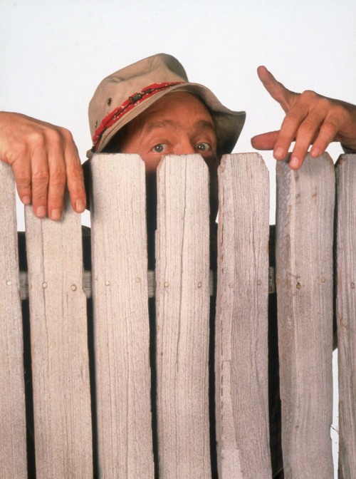 Wilson-home-improvement-tv-sho